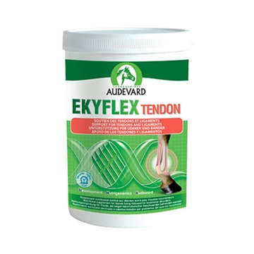 Ekyflex Tendon 600 g